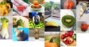 Légumes : Top 15 des meilleures légumes au monde